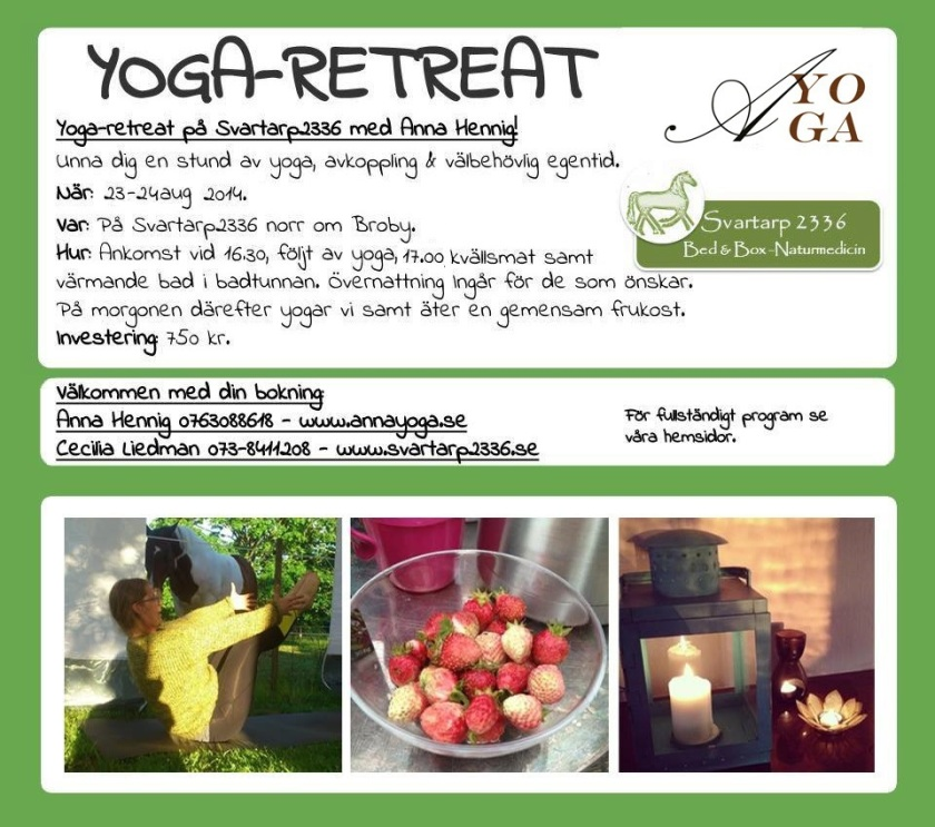 yogaretreat-aug
